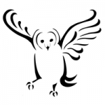 Chintimini Wildlife Center logo